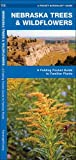 Nebraska Trees & Wildflowers: A Folding Pocket Guide to Familiar Plants (A Pocket Naturalist Guide)