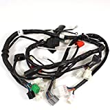 Wiring Loom Non DRL for ZS125-79 (WRLM109)