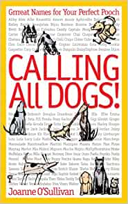 Calling All Dogs Grrreat Names For Your Perfect Pooch O Sullivan Joanne 9781600591556 Amazon Com Books