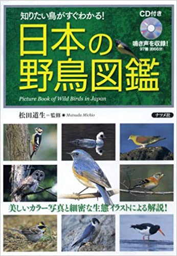 Images of 日本の野鳥一覧 Page 2