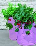 Tierra Garden 50-1060 Haxnicks Strawberry and Herb Patio Planter and Grow Bag, 2-Pack