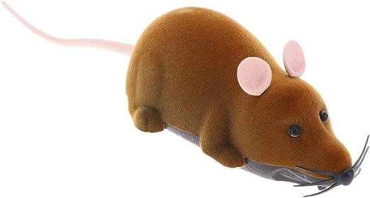 Ratón de juguete con mando a distancia para gatos de Broadroot: Amazon.es: Productos para mascotas