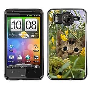 Caucho caso de Shell duro de la cubierta de accesorios de protección BY RAYDREAMMM - HTC G10 - Cute Kitten Cat In Field