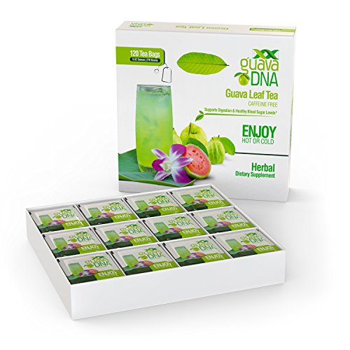 Guava Leaf Tea 120 Individually Wrapped Teabags - incensecentral.us