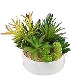 Greatflower Artificial Succulents arrangement with white ceramic pot,Pot Diameter:6inch