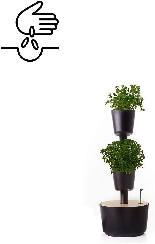 Citysens - Kit Huerto Urbano Vertical con Autorriego, Negro, 2 ...