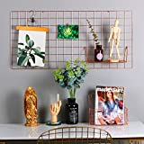 Hosal Rose Gold Photo Frame For Wall Decor,Showcase Of Prints Artwork Memos Paintings,Photo Wall,5 Clips + 4 Nails Included,Pack of 1,Long Size 17.7'' x 37.4''/45x95cm