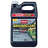 Ortho GroundClear Vegetation Killer Concentrate, 1-Gallon