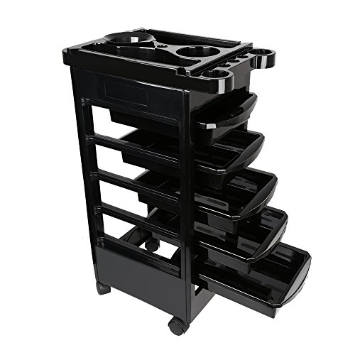 Docooler Salon Hairdresser Barber Trolley Storage Rolling Cart & Organizer Salon Tool (Rolling Storage Case With Drawers)