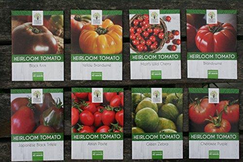 variety tomato seed - 1