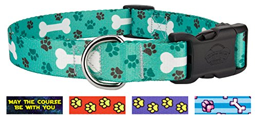 Country Brook Design | Oh My Dog Deluxe Collar - Medium