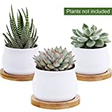 Winlyn 3 Piece Mini White Ceramic Succulent Planter Pot Cactus Plant Pot Set with Bamboo Bases