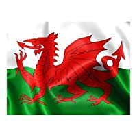 5Ft X 3Ft Wales Welsh Flag With Eyelets Red Dragon