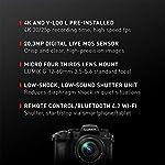 Panasonic LUMIX G95 20.3 Megapixel Mirrorless Camera, 12-60mm F3.5-5.6 Micro Four Thirds Lens, 5-Axis Dual I.S. 2, 4K…