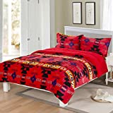 Southwest Design (Navajo Print) Queen Size 3pcs Set 16112 Red