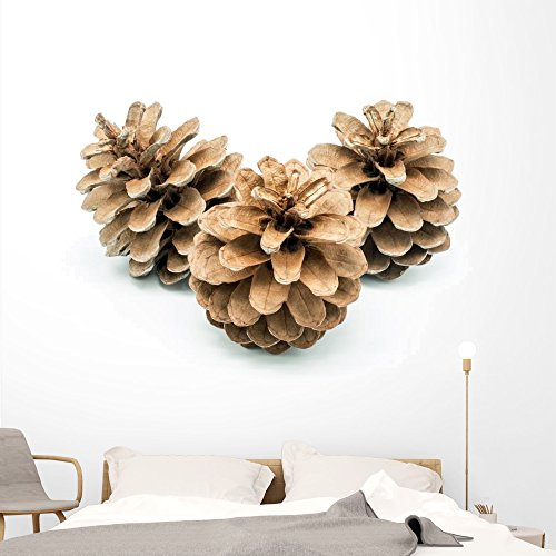 Wallmonkeys Pinecones Wall Decal Peel and Stick Holiday Graphics (72 in W x 48 in H) WM320370