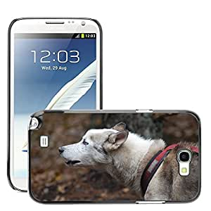 Super Stella Slim PC Hard Case Cover Skin Armor Shell Protection // M00104276 Dog Training Sports Sled Dog Forest // Samsung Galaxy Note 2 II N7100