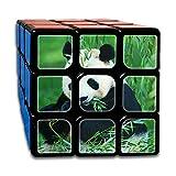 AVABAODAN Panda Bamboo Rubik's Cube Original 3x3x3 Magic Square Puzzles Game Portable Toys-Anti Stress For Anti-anxiety Adults Kids