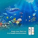 RUNBO Aquarium 6 in 1 Test Strips for Fresh/Salt