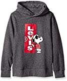 Levi's Boys' Big Graphic Logo Pullover Hoodie, Grey Snoopy M