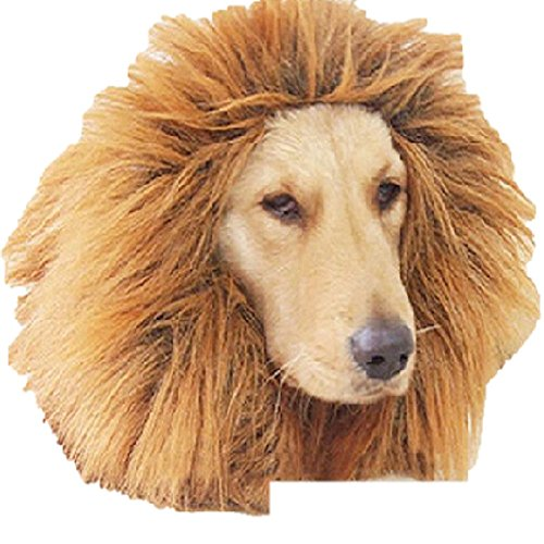 [T2C Lion Wig Brown Mane Hair Large Pet Dog Festival Party Fancy Dress Clothes Costume] (Bull Rider Costume Toddler)