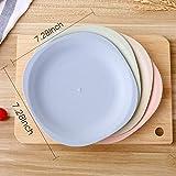 Shopwithgreen Lightweight Wheat Straw Plates - 4