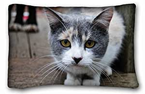 Generic Personalized Animal Custom Zippered Pillow Case 20x30 inches(one sides) from Surprise you suitable for Twin-bed