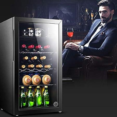 HUATINGRHHO Silencioso Nevera para vinos, Nevera de Bebidas, 4 Iluminación Interior LED Panel de Control Táctil Doble Acristalamiento y Doble Control de Temperatura Puerta Cristal