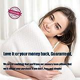EPABO Contour Memory Foam Pillow Orthopedic