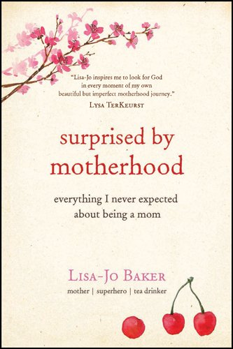 surprised by motherhood everything i never expected about being a
