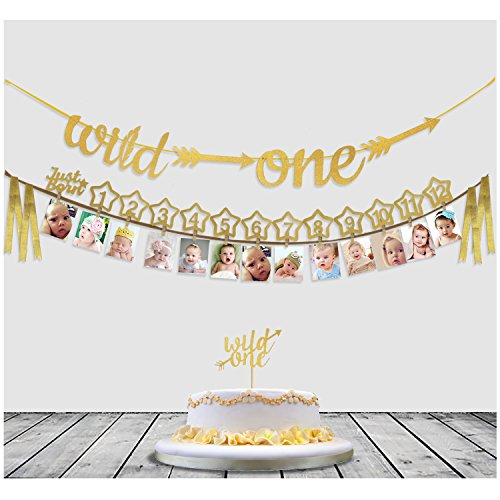 Baby's 1st Birthday Decorations- 12 Month Photo Banners,Wild One Birthday Banners,Wild One Cupcake Topper,the Wild One Party Supplies