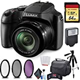Panasonic Lumix DC-FZ80 Digital Camera + Carrying Case + 64GB Memory Card Bundle