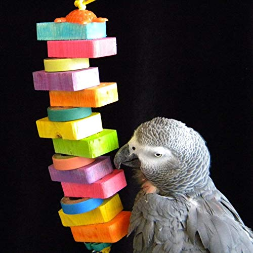 FunTime Birdy Bagels and Blocks Bird Toy for African Grey and Amazon - Bagels Birdy