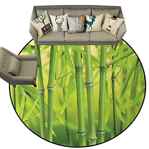 Hedda Clare Flag Anti-Slip Round Doormats,Bamboo,Close up of Bamboo Sprouts Stems Nature in Tropical Rain Forest Wildlife Asian Feng Shui,Green,Living Room Bedroom Office Soft Carpet Floor Mat5 feet