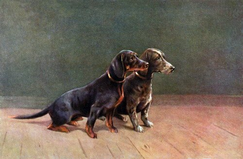 Vintage Art~2 Dachshund Puppy Dogs~Dappled & Black & Brown~6 pack NEW Matte Vintage Picture Large Blank Note Cards with Envelopes by Exquisite Images Cards~Prints