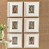 Tozai S/6 Genuine Geode Wall Art in White Wash Wooden Frame