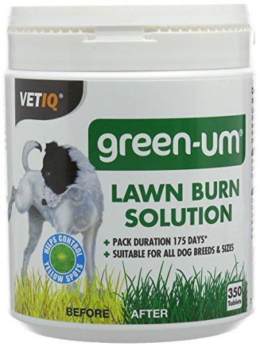 Mark And Chappell Ltd Vetiq Green-um Lawn Burn Solution