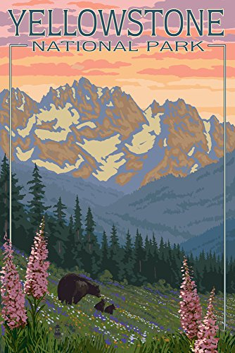 - Yellowstone National Park, Wyoming - Spring Flowers (12x18 Art Print, Wall Decor Travel Poster)