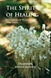 The Spirit of Healing, Judith Meister Osahmin, 1888160543