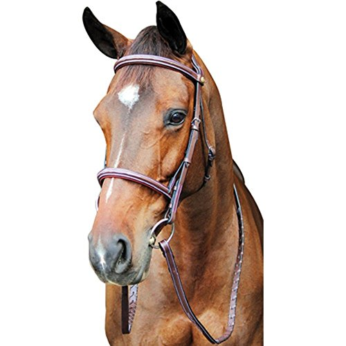 Padded Raised Bridle (Henri de Rivel HDR Pro Fancy Raised Comfort Crown Padded Bridle H)
