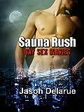 Sauna Rush: Gay Sex Diaries