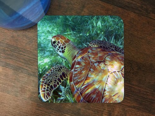 Sea Turtle Swimming in the Ocean Silicone Drink Beverage Coaster
