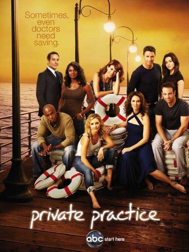 Private Practice Poster TV E (11 x 17 Inches - 28cm x 44cm ) Kate Walsh Tim Daly Taye Diggs Amy Brenneman Paul Adelstein