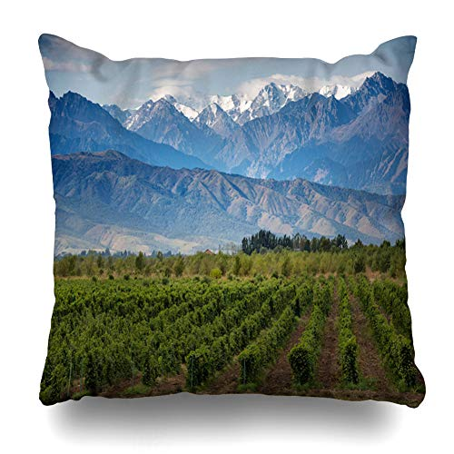 (HomeOutlet Throw Pillow Cover Pink Wine Vineyards Nature Mendoza Argentina Green Almaty Italy Design Countryside Pillowcase Square Size 16 x 16 Inches Home Decor Sofa Cushion Case)