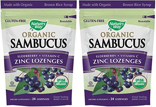 Nature's Way Organic Lozenge, Elderberr Zinc, 24 Count (2 ()