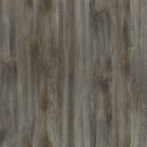 Formica Sheet Laminate 4 x 8: Umbra Oak by Formica