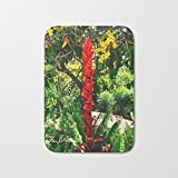 SPXUBZ Alpinia Purpurata Red Ginger Flower Nature In Bogota Colombia Welcome Non Slip Entrance Rug Outdoor/Indoor Dirt Buster Durable and Waterproof Machine Washable Door Mat Size 23.6x15.7 Inch