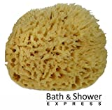 Sea Wool Sponge 6-7' (X-Large) by Bath & Shower Express ® Natural Renewable Resource!