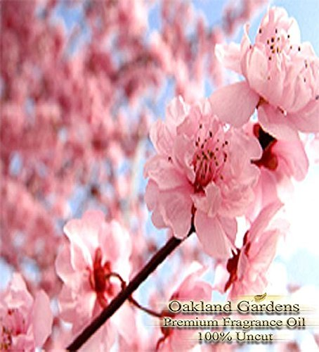 JAPANESE CHERRY BLOSSOM Fragrance Oil - 100% Pure Premium Grade Oil - Tender cherry blossom, sensual white lily and blushing violet petals blended with a hint of warm vanilla - BULK Frangrance Oil By Oakland Gardens (120 mL - 4.0 fl oz Bottle) by Oakland Gardens