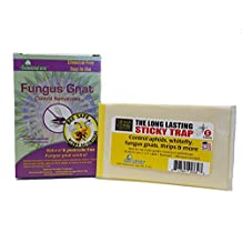 Nema Globe 4003227 2 X 5 Million Beneficial Nematodes Fungus Gnat Pest Control Total 500sqft Coverage-Bonus5 Yellow Sticky Cards (Traps)